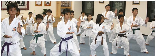 Shorinjiryu Karate-do Renshinkan, Kanto region headquarter Budo Karate (martial art & karate) Imai Dojo