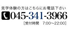 045-341-3966